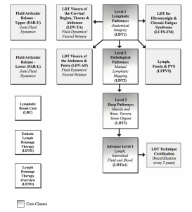 Lymph Drainage Therapy (LDT) course flowchart
