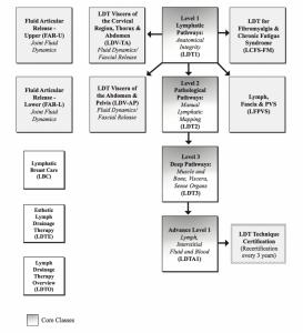 Lymph Drainage Therapy (LDT) course flowchart