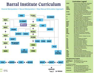 CranioSacral Therapy (CST) course flowchart